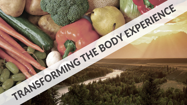 header-radical-transformation-is-it-correct-for-me-part-1-body-experience