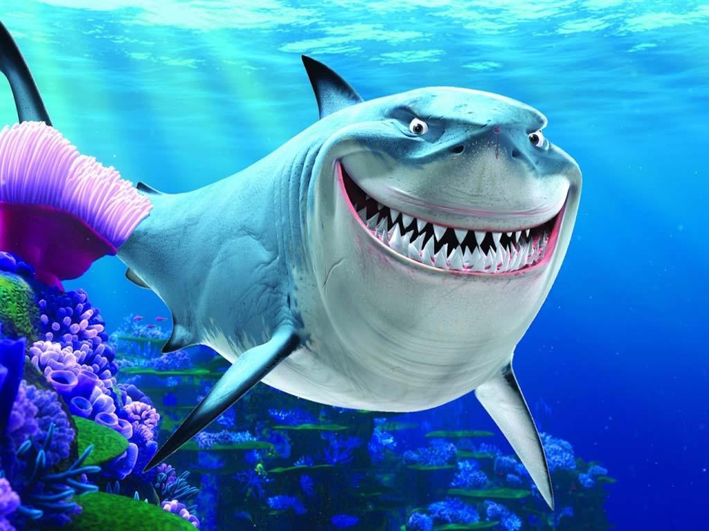 cartilago-de-tiburon-propiedades-y-beneficios-para-nuestros-huesos-y-articulaciones-tiburon